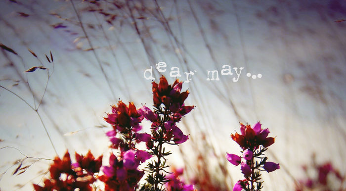 dear-may.png