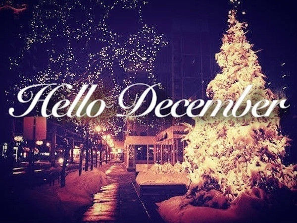 218311-Hello-December-Quote-With-Christmas-Tree.jpg